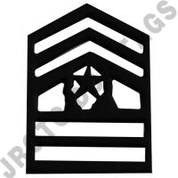 CSM Subdued Army Cadet Rank (Pair)