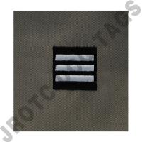 Lieutenant Colonel (LT COL) ABU Rank ROTC Sew On (Pair)